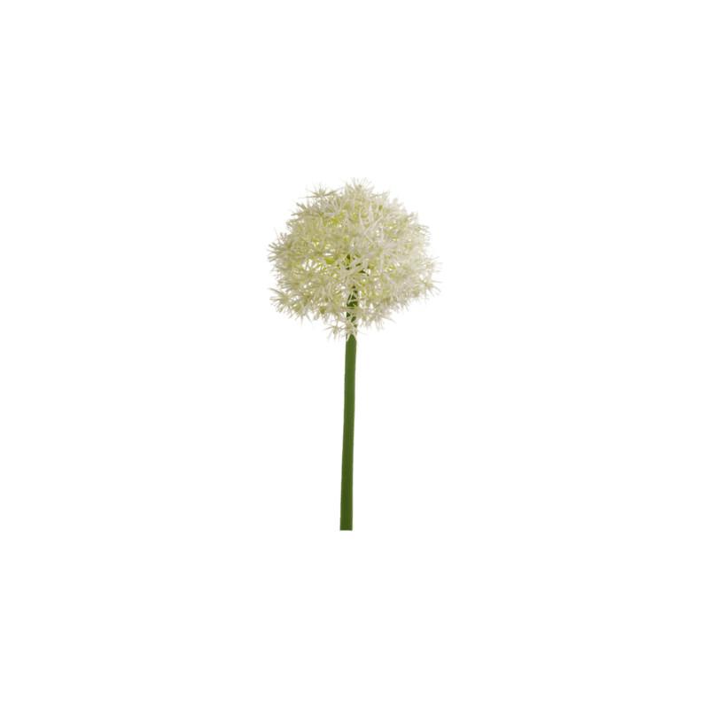 Allium Stem white 65 cm