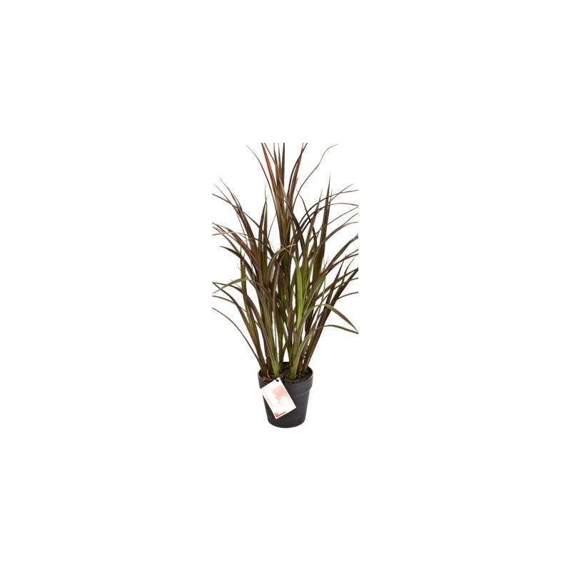 Grass natural bush red umelá rastlina 75 cm