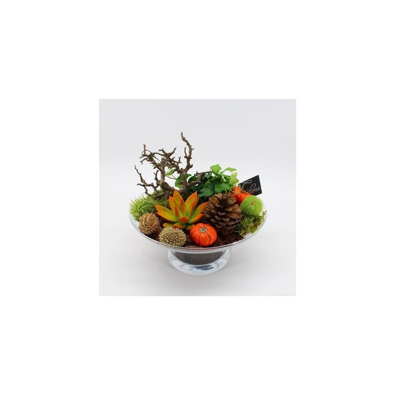 Aranžmán rastlín v skle jeseň 24x25 cm