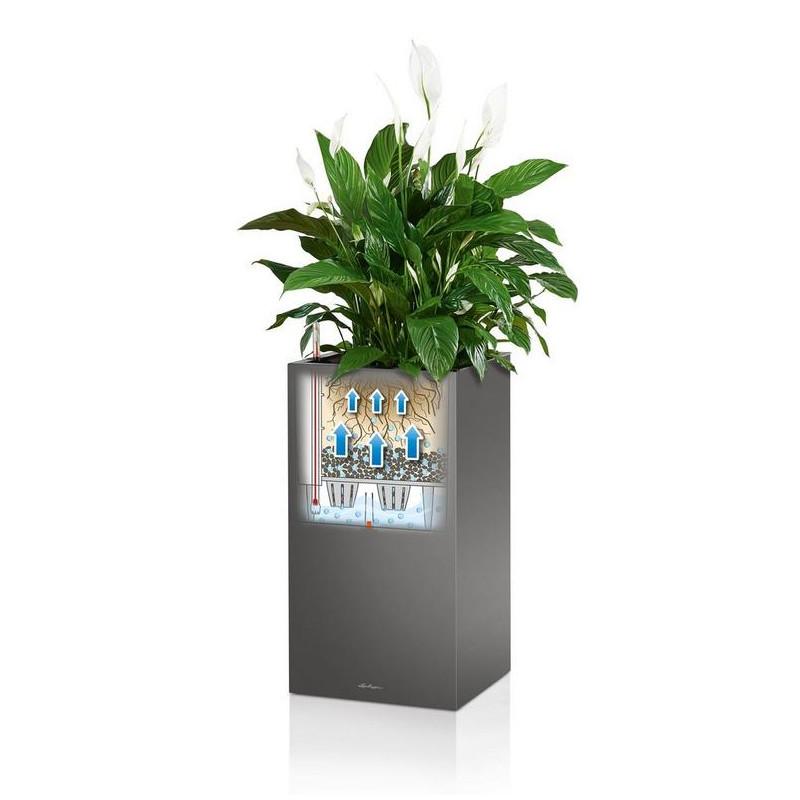 Lechuza Canto Premium Tower All inclusive set Black High Gloss 40x40x76 cm