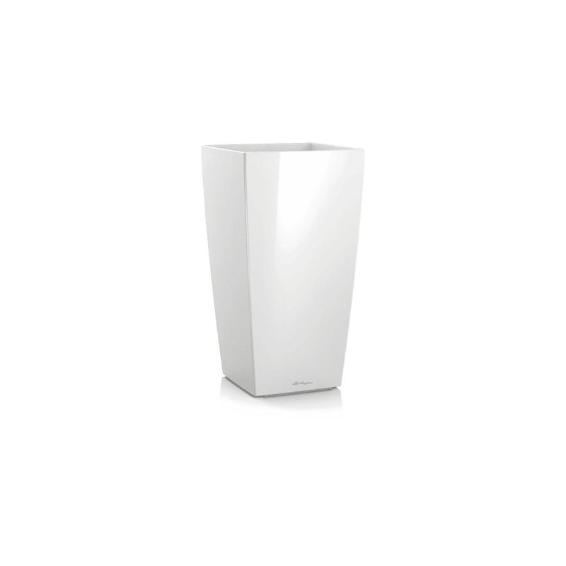 Cubico 30/56 biela