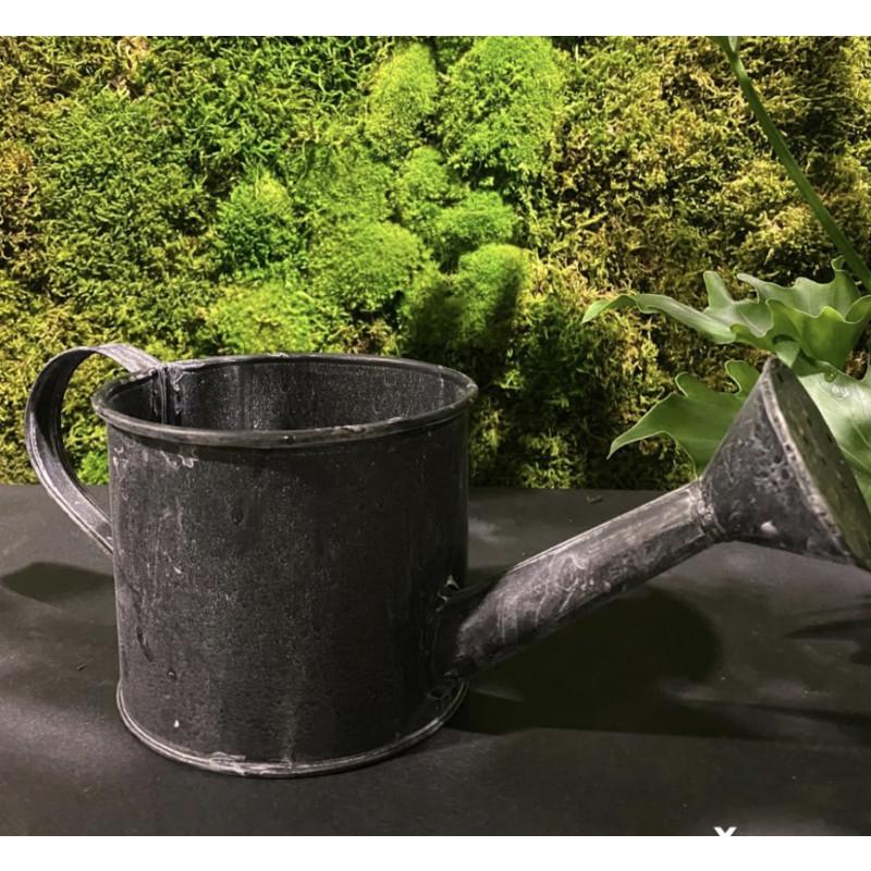 Ceramic pot Watering can 12 cm