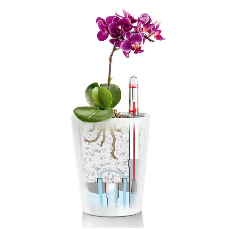 Lechuza Deltini Mini All inclusive set taupe high gloss 10x13 cm